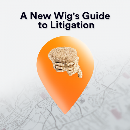 A new wig's guide to litigation